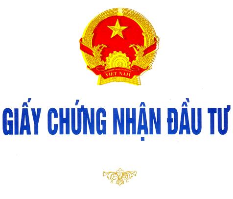 Tư vấn điều chỉnh giấy chứng nhận đầu tư tại TP Hồ Chí Minh