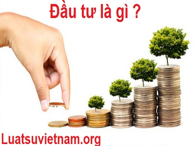 Đầu tư trực tiếp và đầu tư gián tiếp